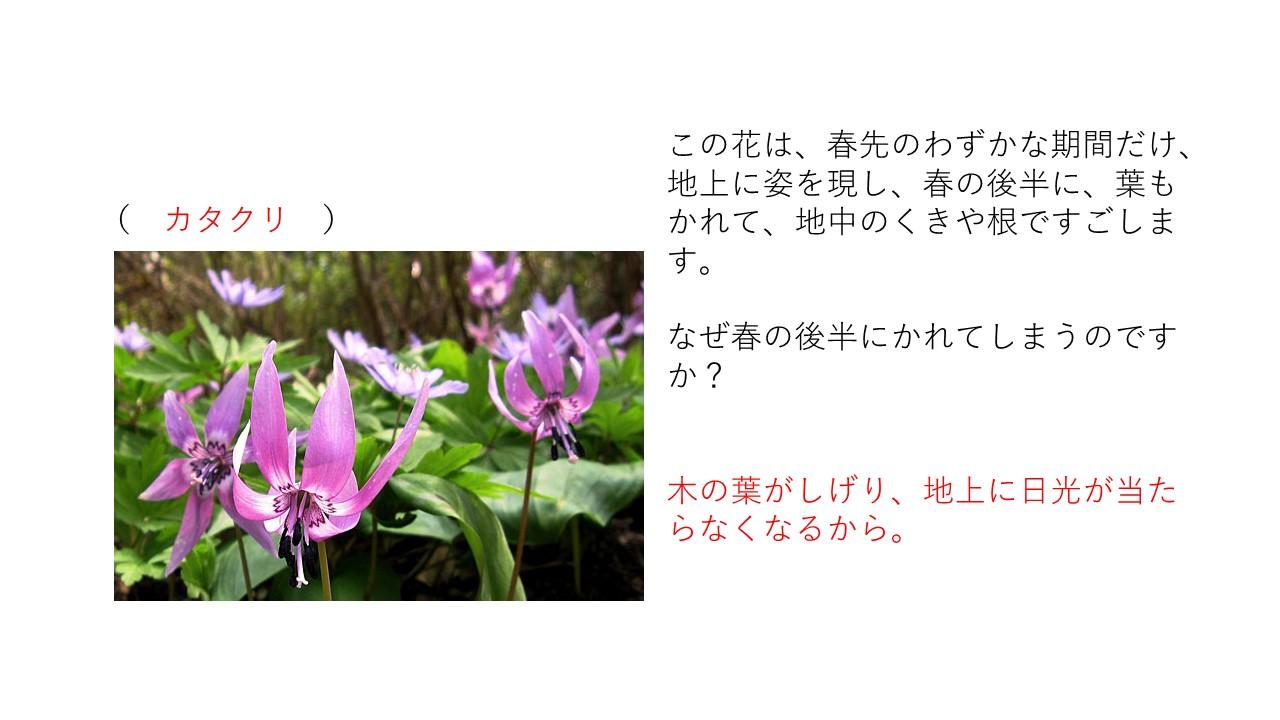 15 slide